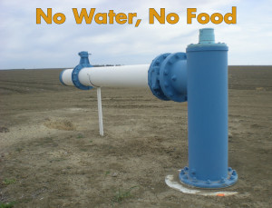 No Water Logo