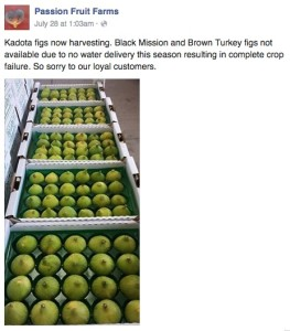 Passion Fruit Farms FB