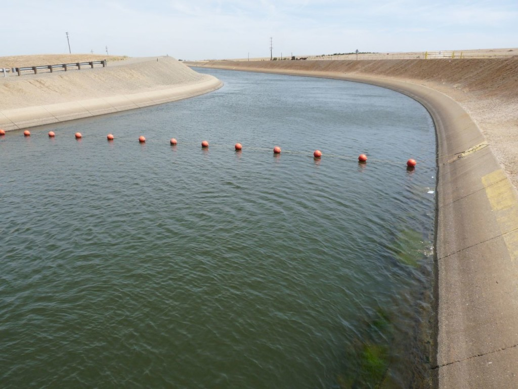 Central Valley Project (CVP) Water
