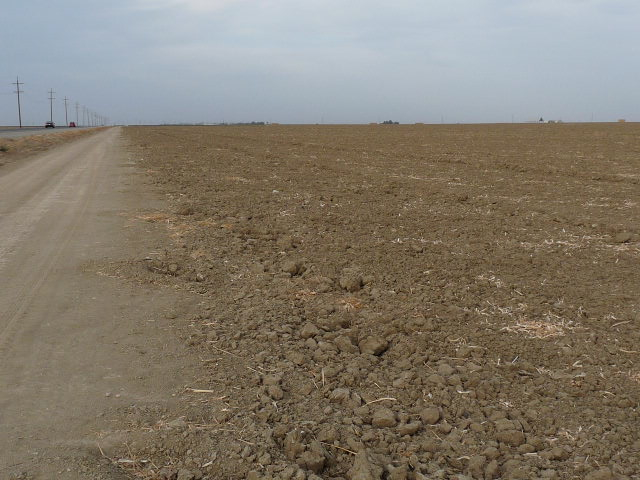 Fallowed Field in Fresno County, California in 2014 due to zero water allocation.