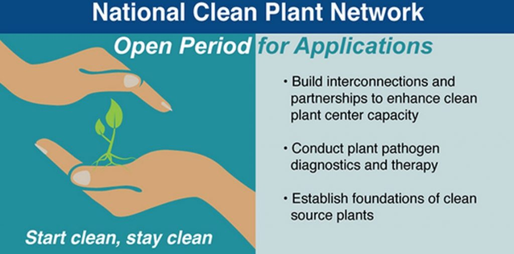 Clean Plant Network