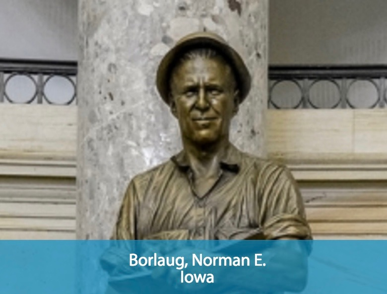 borlaug Norman borlaug agriculture scientist a central figure in the green revolution, norman ernest borlaug (march 25, 1914- ) was born on a farm near cresco, iowa, to henry and clara borlaug.