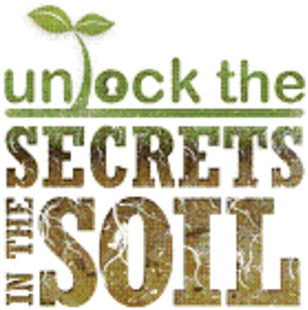 Unlock the secrets in the soil diversity