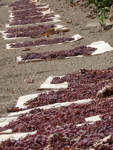 Sun-Dried Raisins