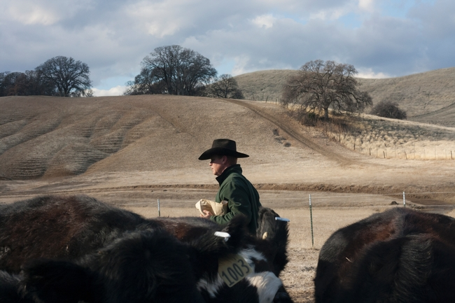 Farmer and Ranchers Voices from the Drought