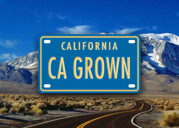 Secretary Ross Teams Up With Visit California to Promote Agritourism