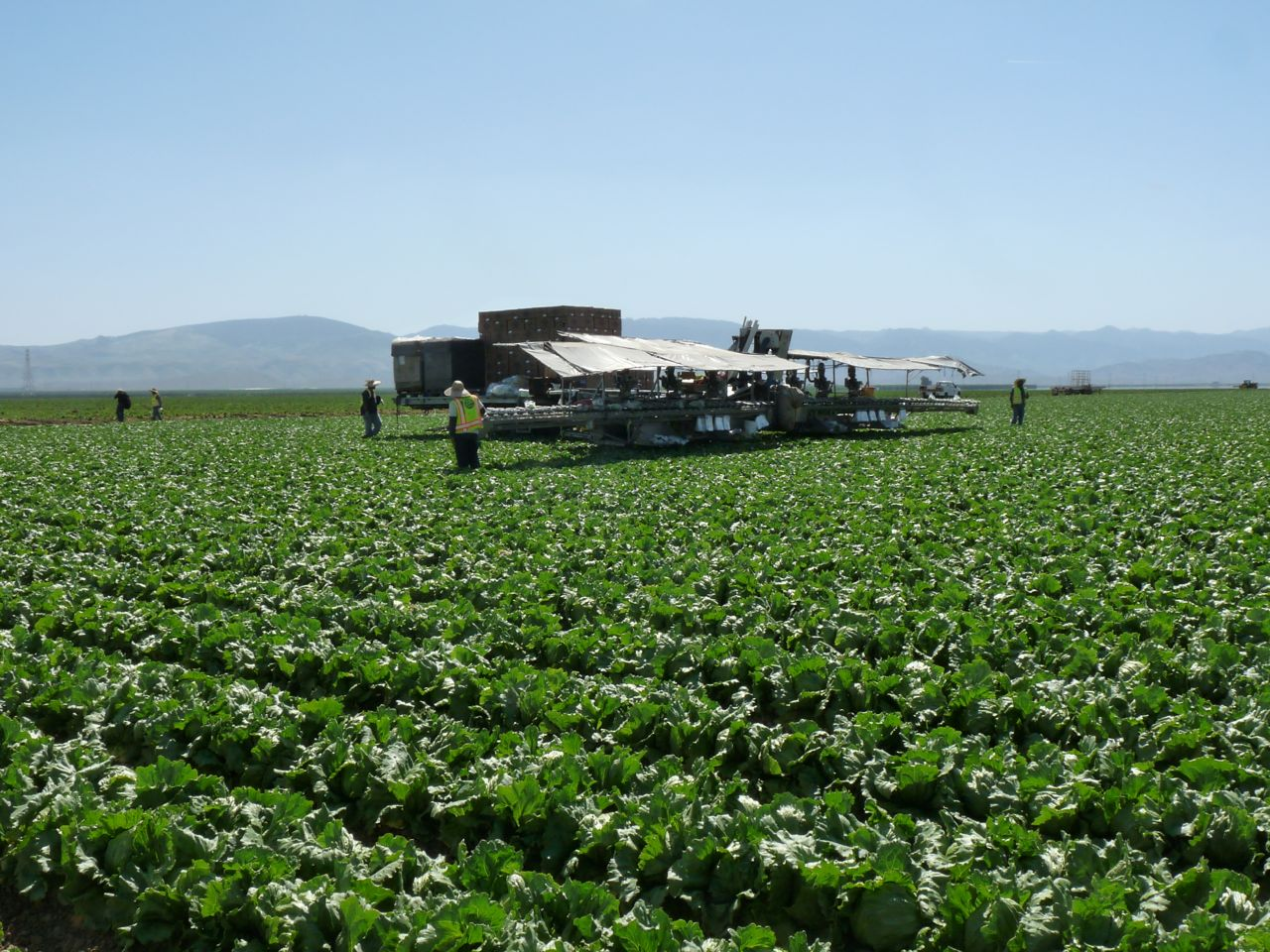 CDFA Official on California Farming Innovation