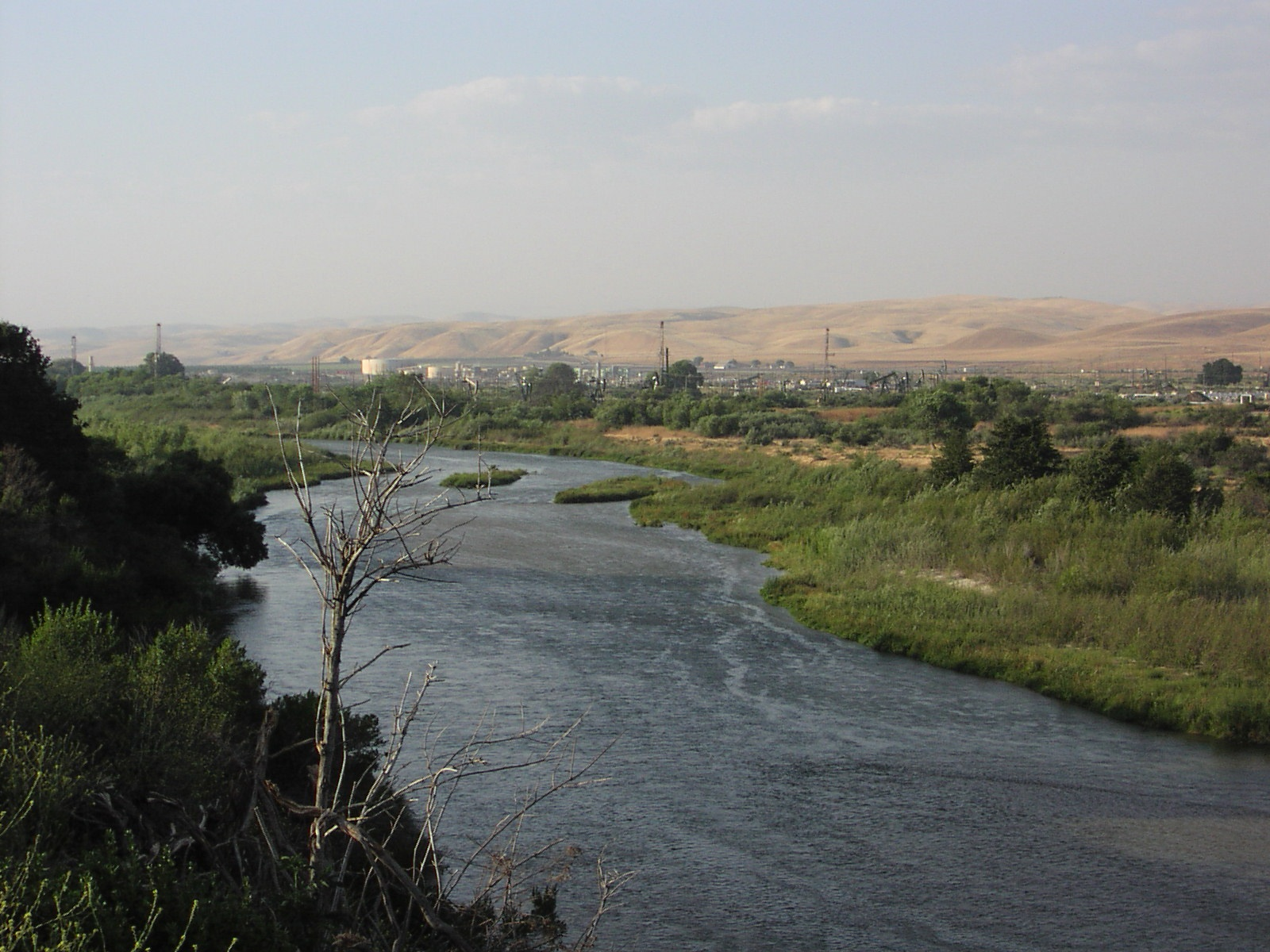 EIR Approved to Clear Brush From Salinas River