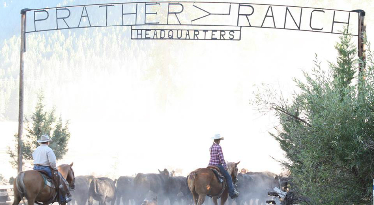 Prather Ranch Receives 2015 California Leopold Conservation Award