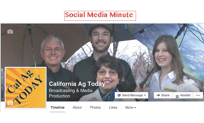 Social Media Minute—January 2016