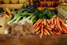 veggies vegetables