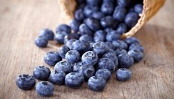 California Blueberry Growers Fit a Profitable Gap