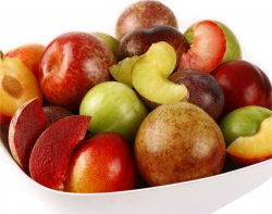 Family Tree Farms Enjoys Exceptional Tree Fruit Year