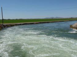 Imperial Irrigation District Files Legal Brief in Abatti Case Appeal