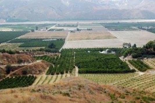 california-farmland