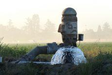flood-irrigation-pump Nitrates water sgma
