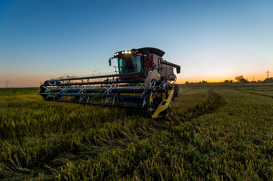 California Rice Commission, Brian Baer Photography