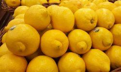 Tough Market for California Lemons