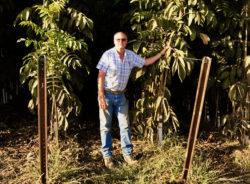 Walnut Farmer Talks Family's Founding of Crows Landing