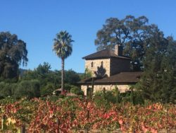 Wineries Need Business after Napa & Sonoma Fires