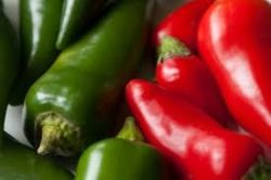 Hybrid Peppers on the Rise