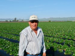 Corona Virus Disaster Help is On The Way For Farmers