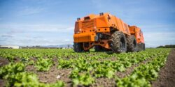 Farmwise Bringing Automation to the Vegetable Field