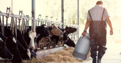 Resources For Farm Mental Health
