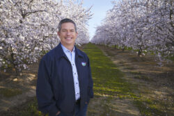 Blue Diamond Growers Innovate